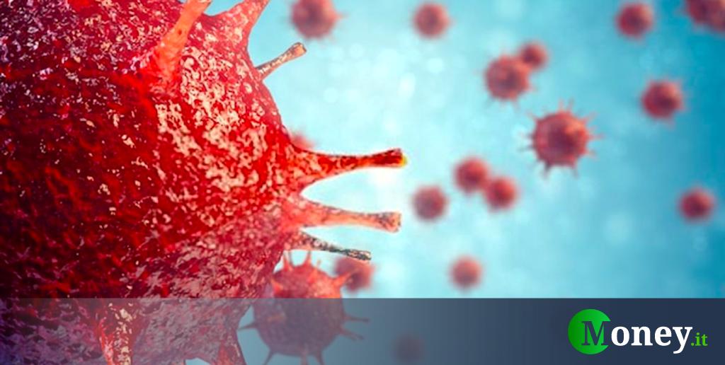 Yaravirus: cos'è il nuovo virus che arriva dal Brasile
