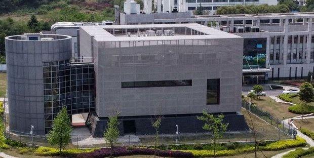 Wuhan: la (vera) storia del laboratorio al centro delle teorie sul coronavirus