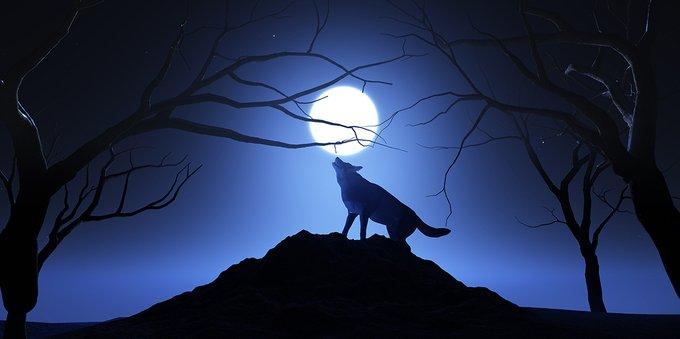 Luna del lupo: cos'è, orario e come vederla