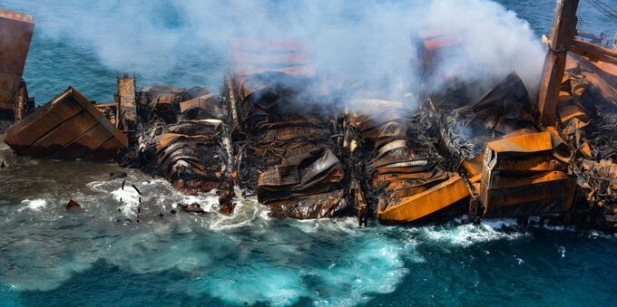 Disastro ambientale in Sri Lanka: cosa sta succedendo e quali specie sono a rischio