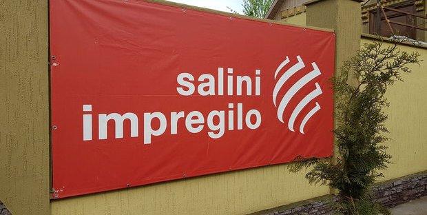 Salini: